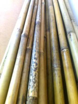 Bamboo 3m x 25mm Pole