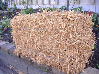 Pea Straw or Hay Bale - Pea Straw
