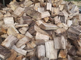 Poplar Firewood Dry ready to burn now